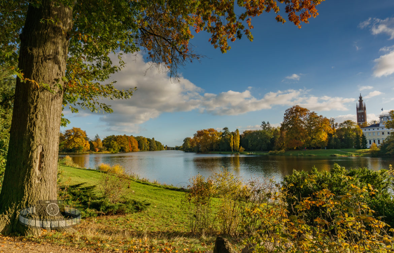 Konserve – Wörlitzer Park
