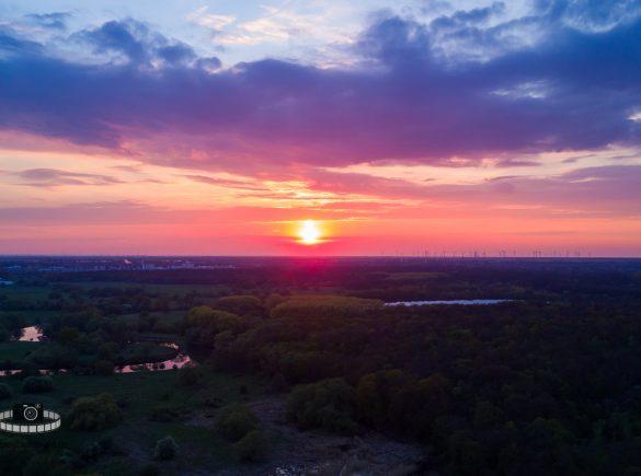 Video - Sonnenuntergang in den Muldeauen