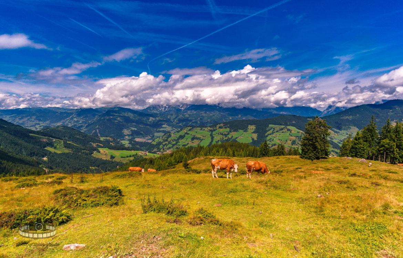 Unterwegs auf dem Grafenberg – Ski Amadè (Teil 2/6)