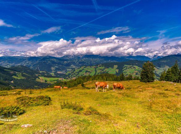 Unterwegs auf dem Grafenberg - Ski Amadè (Teil 2/6)