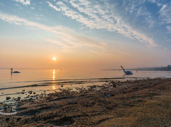 Sonnenaufgang über dem Goitzschesee
