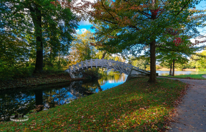 GoPro Hero 6 – Herbst im Wörlitzer Park